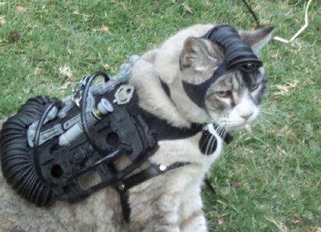Gato espía - Acoustic Kitty