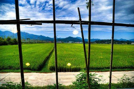 Japón convierte 1,3 millones de hectáreas en granjas solares