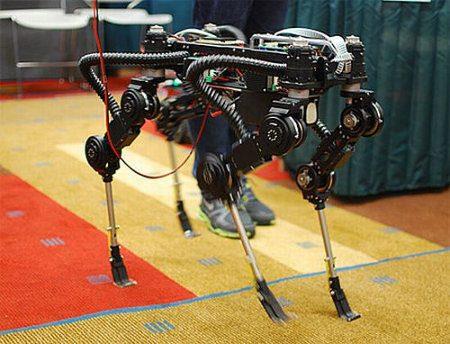 Un interesante y pequeño perro robot