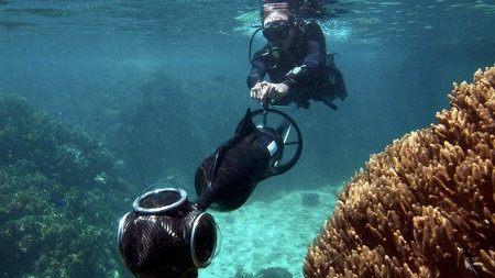 Google Seaview es Google Street pero bajo el agua