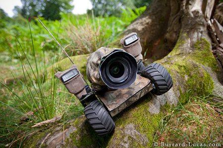 Beetlecam 2, ideal para fotografiar animales salvajes