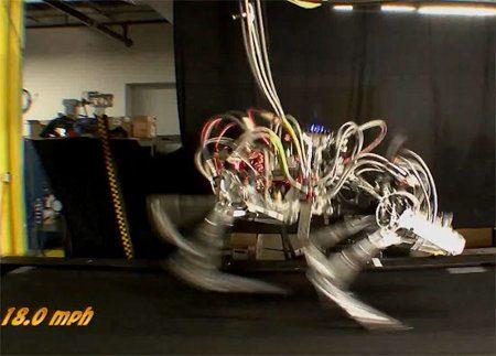 Cheetah, el robot con piernas más rápido de la historia