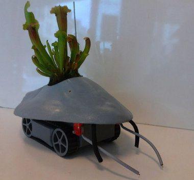 Interesante robot que mueve las plantas hacia lugares soleados