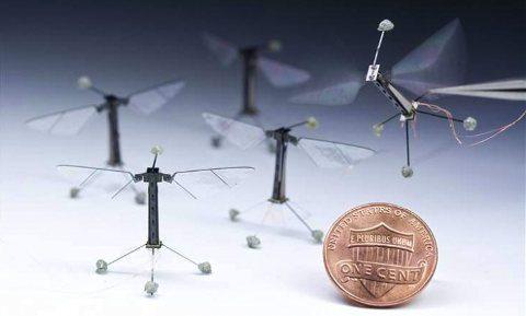 Mira los drones más pequeños del mundo
