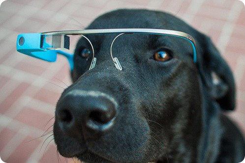 Apple llegó a trabajar en un dispositivo similar a Google Glass
