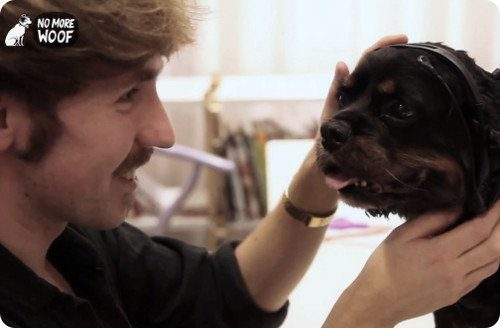 No More Woof: hora de entender a tu perro