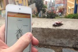4roboroach-te-ayudara-a-controlar-cucarachas-vivas-tecnomagazine
