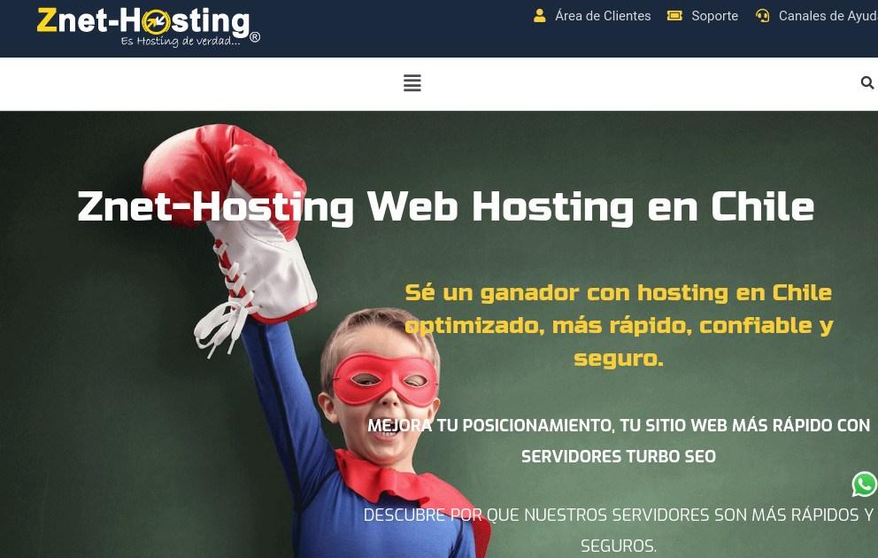 znethosting web hosting chile